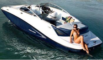 Bullhead JEt Ski Rental Boat